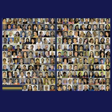 Informe de las Actividades  2017 IIMAS  Dr. Héctor Benítez Pérez